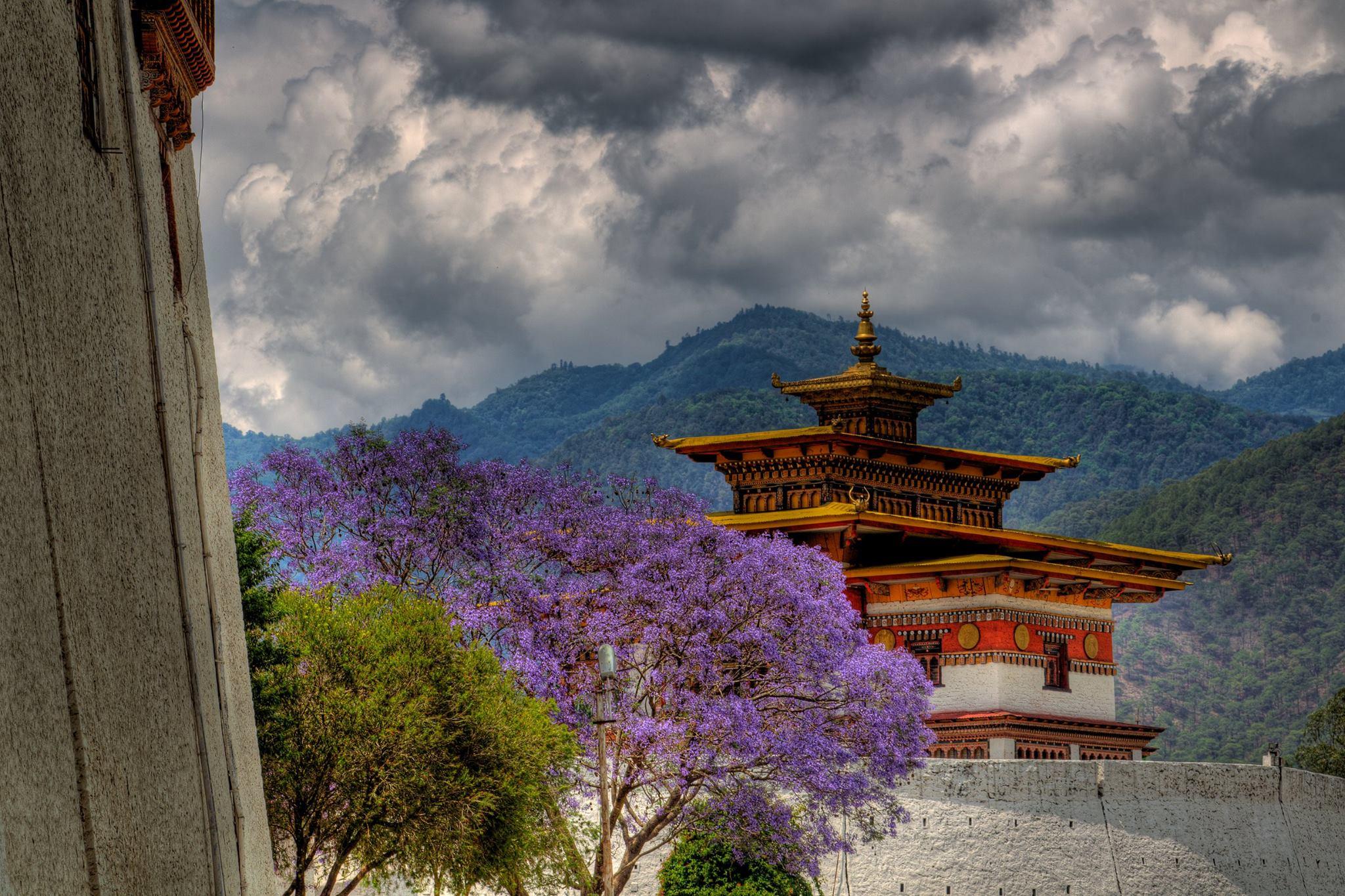 Highlight of Bhutan - thumbnail
