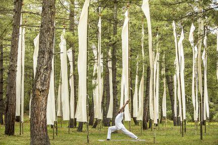 Uma, Paro, Yoga in the garden