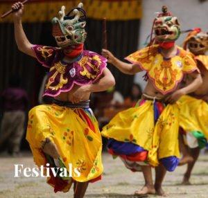 Festivals Link